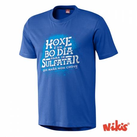 Camiseta Hoxe é un bó día para ir sulfatar