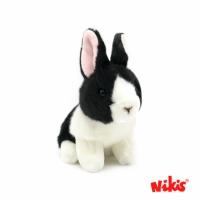 Pandeiro El Conejo